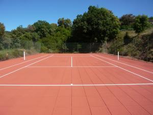 Loisirs for Terrain de tennis taille